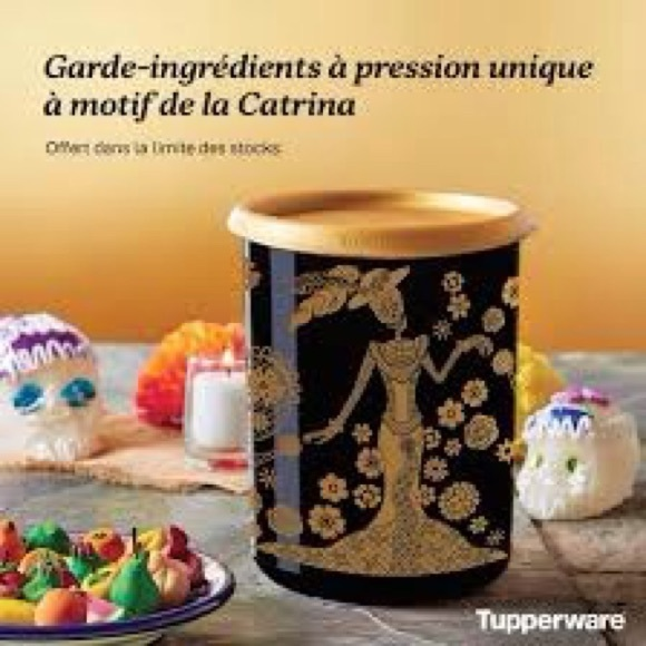 Tupperware One Touch  Canister The Catrina